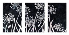 J-Partington-Agapanthus-triptychx15
