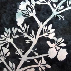 J-Partington-Blossom-x15