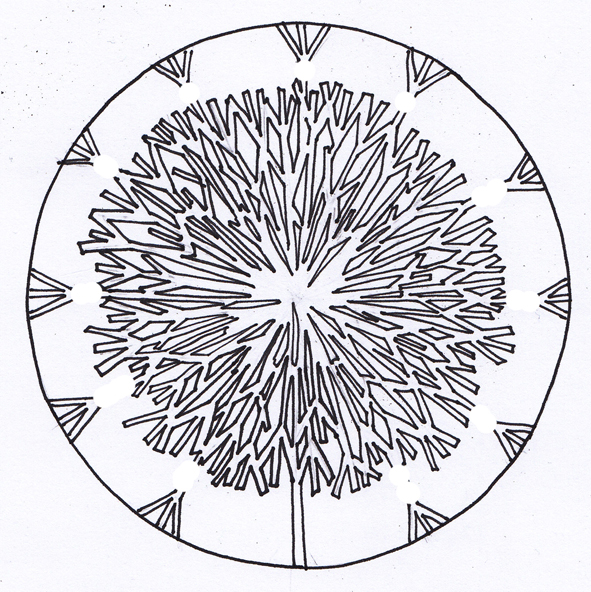 dandelion coloring pages - photo#31