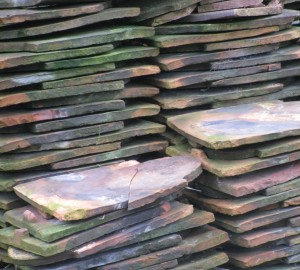 Photograph of roof tiles at National Trust property, Tyntesfield